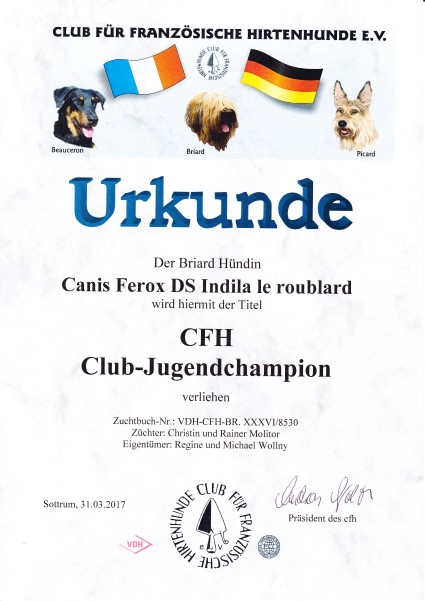 Indila Clubjugendchampion Custom